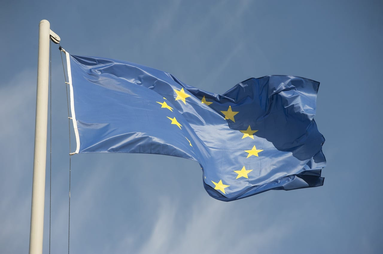 Europapolitik Europawahl