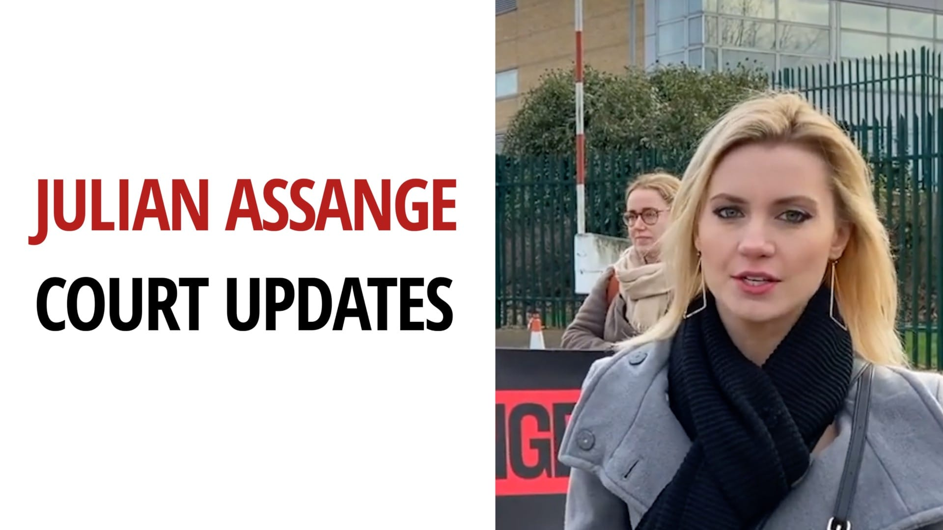 Julian Assange Case