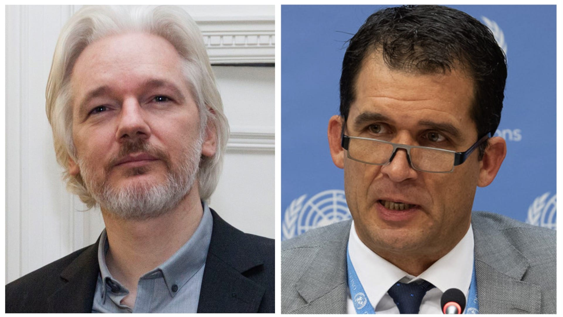 Nils Melzer Torture Assange